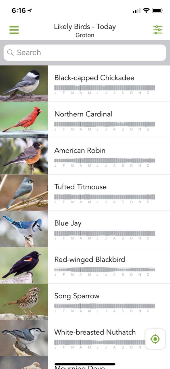 Merlin Bird for iOS